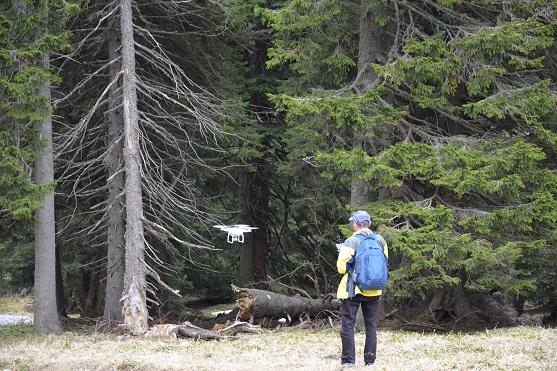 Natáčení lesa | Zdroj: droncentrum