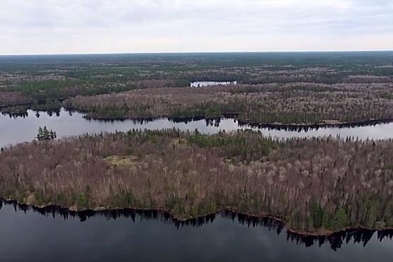 Záběr na krajinu v severním Ontariu | Zdroj: video