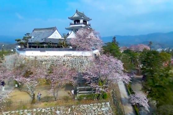 Záběr na hrad Kochi v Japonsku | Zdroj: video