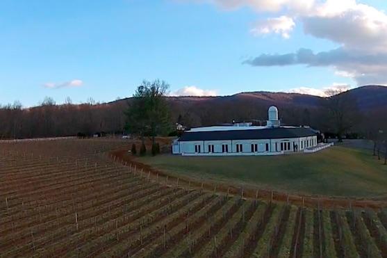 Pohled na vinice Barboursville | Zdroj: video