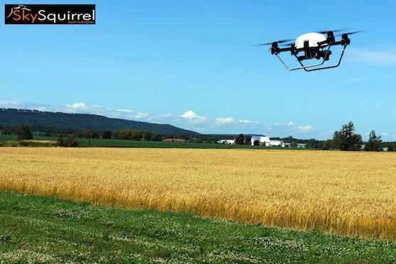 Dron firmy Sky Squirrel pro analýzu vinic | Zdroj: facebook.com - SkySquirrelTechnologies