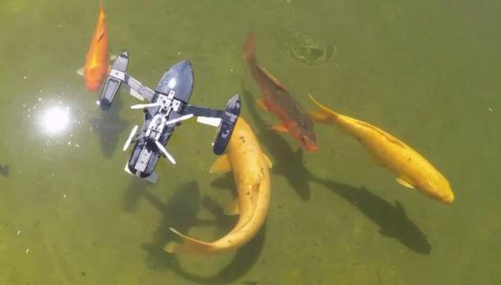 Parrot Hydrofoil ve společnosti ryb | Zdroj: droncentrum