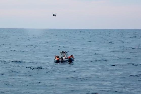 Vědci využívají drony ke sběru hlenu velryb | Zdroj: video